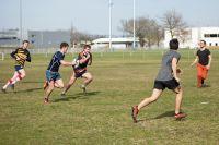 rugbyIMTMinesAlbi.jpg